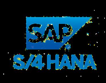 SAP S/4 HANA Logo - Our Speciality