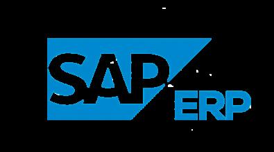 SAP ERP Logo - Our Speciality
